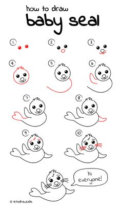 Drawn seal easy art Baby perfect Easy drawing dog
