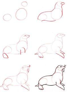 Drawn seal water animal And Dog Learn  illustrazione