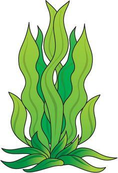 Drawn seaweed Seaweed%20clipart Clipart Clipart Clipart Panda