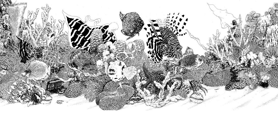 Drawn seaweed realistic And