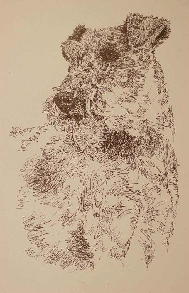 Drawn see #9