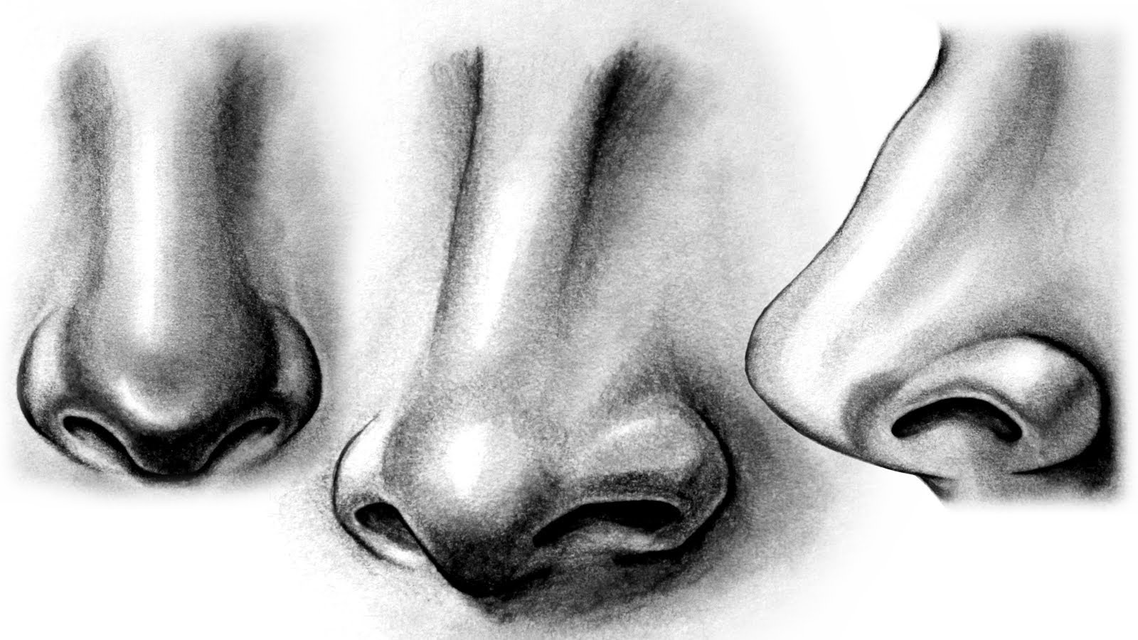 Drawn amd nose How to Nose YouTube a