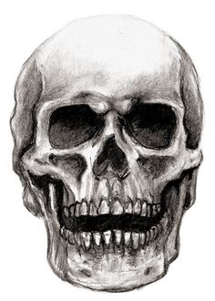 Drawn ssckull unique Pencil of skull To of