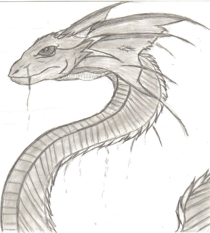 Drawn serpent Images Realistic Serpent Photo Pencil