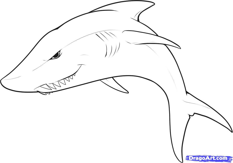 Drawn shark Draw to Shark to Easy