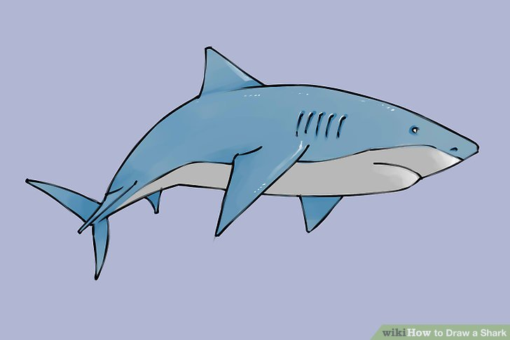 Drawn shark Draw titled wikiHow to Shark