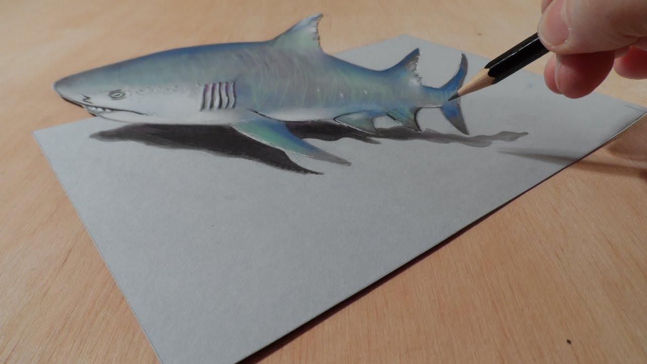Drawn shark 3d street art Shark Trick & Art 3D