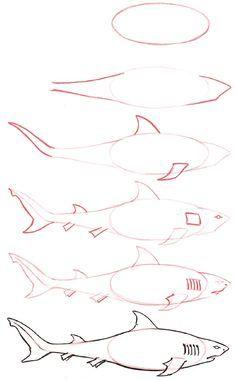 Drawn shark 3rd The for list Shark Can't