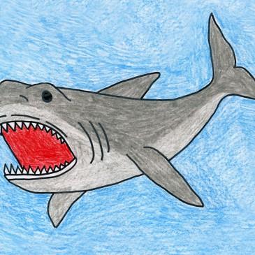 Drawn shark 3rd Megalodon Draw a Shark Skunk