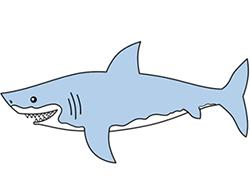 Drawn shark Shark Lesson drawing Step Cartoon
