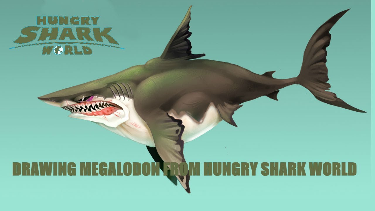 Drawn shark angry shark DRAWING FROM FROM SHARK MEGALODON