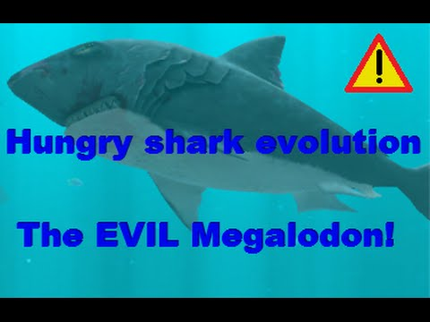 Drawn shark angry shark Hungry evolution evolution Evil shark