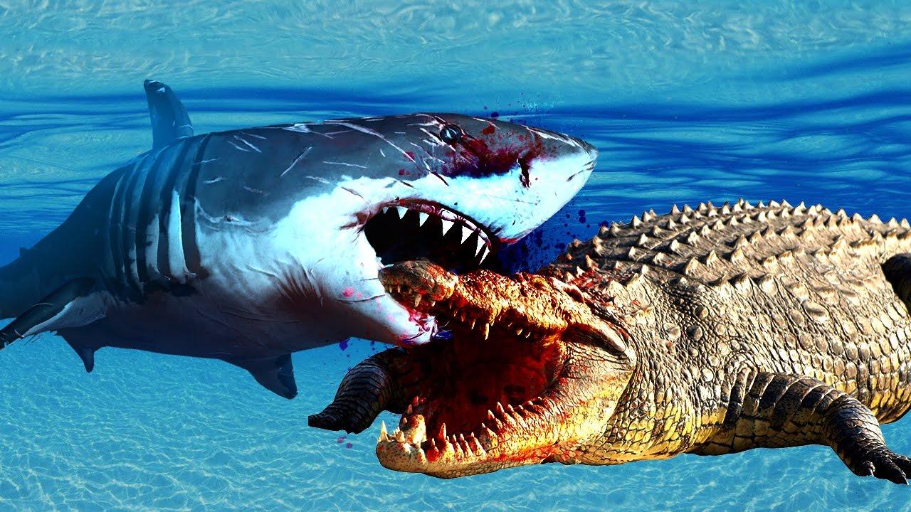 Drawn shark crocodile Finger Shark Crocodile Videos Crocodile
