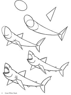 Drawn shark crocodile Shark hybrid Search  Arkady
