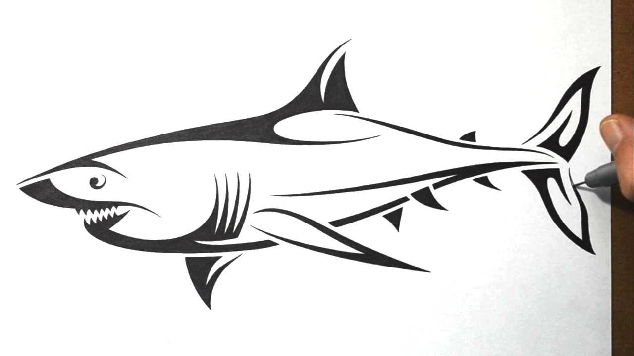 Drawn shark crocodile Draw Shark Tattoo YouTube Tribal