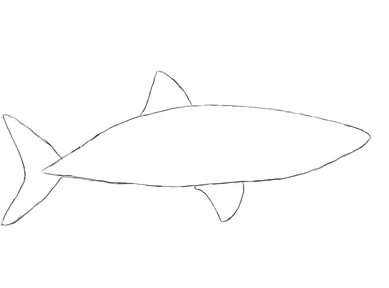 Drawn shark mako shark Gallery Shark By A Mako