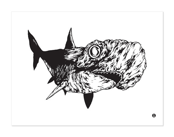 Drawn shark pen and ink Nautical Head and Hammer Head