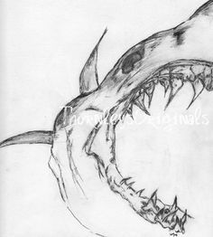 Drawn shark skull Drawings Discover Pinterest Google jaw