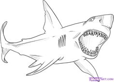 Drawn shark stencil Shark a How Pinterest to