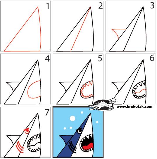 Drawn shark step by step SHARK SHARK in How a