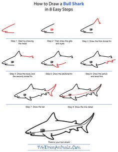 Drawn shark step by step How pixels  by com/wp