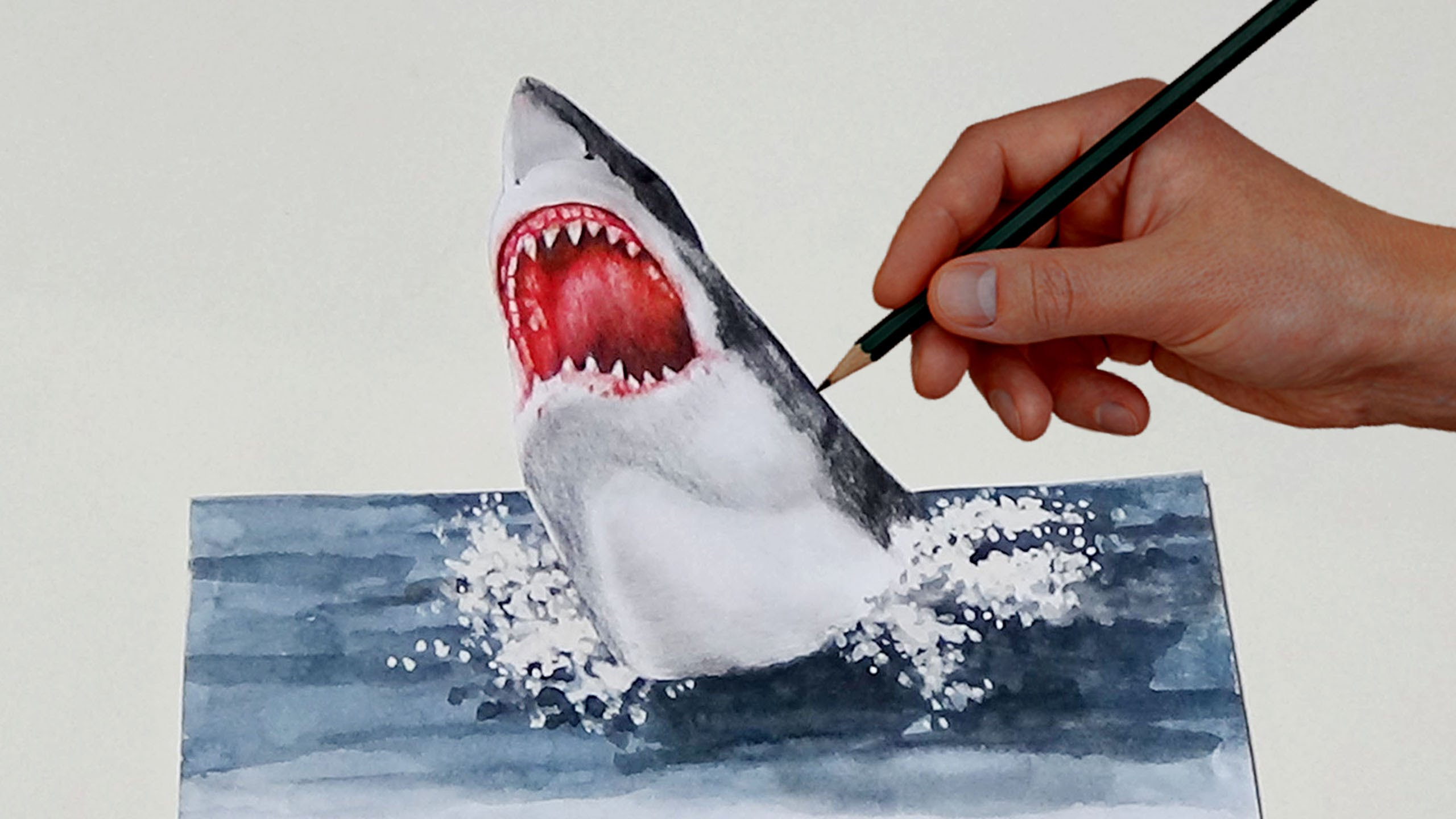 Drawn shark trick Colored Simple Simple With Shark