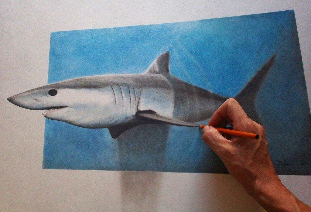 Drawn shark vamos Mako Shark by DeviantArt AnthonyRojas