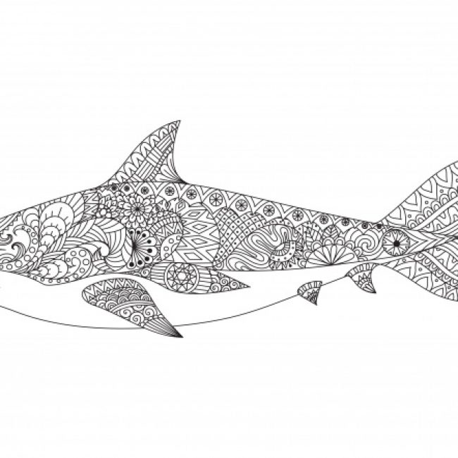 Drawn shark vintage Drawn shark #16164 Free background