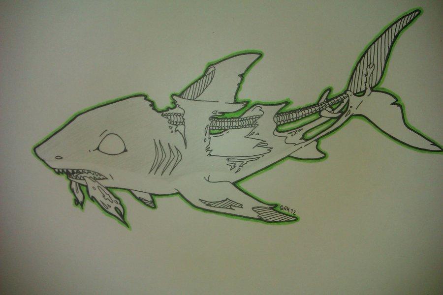 Drawn shark zombie shark  Zombie Shark Drawing