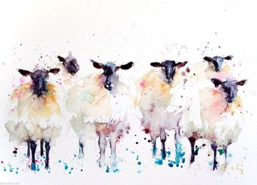 Drawn sheep abstract PRINT Buckley art EDITON signed