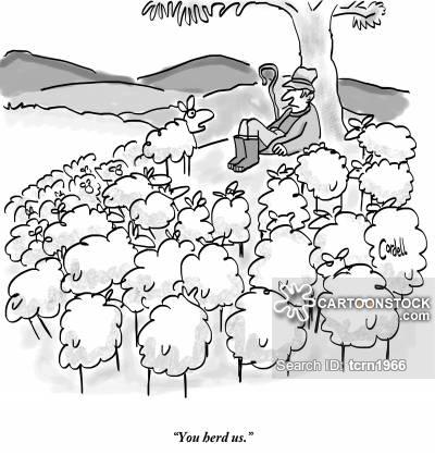 Drawn sheep herd sheep Funny cartoon 2 Sheep Comics