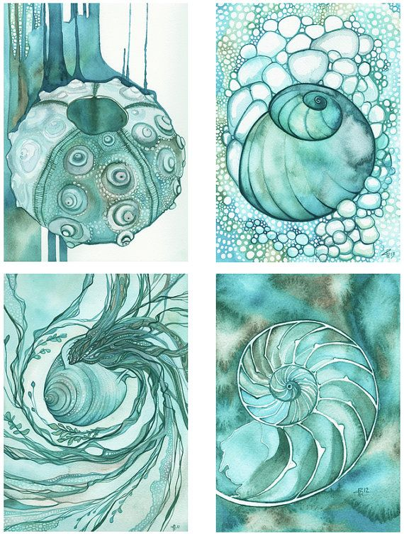 Drawn shell artist Best ideas painting the sea