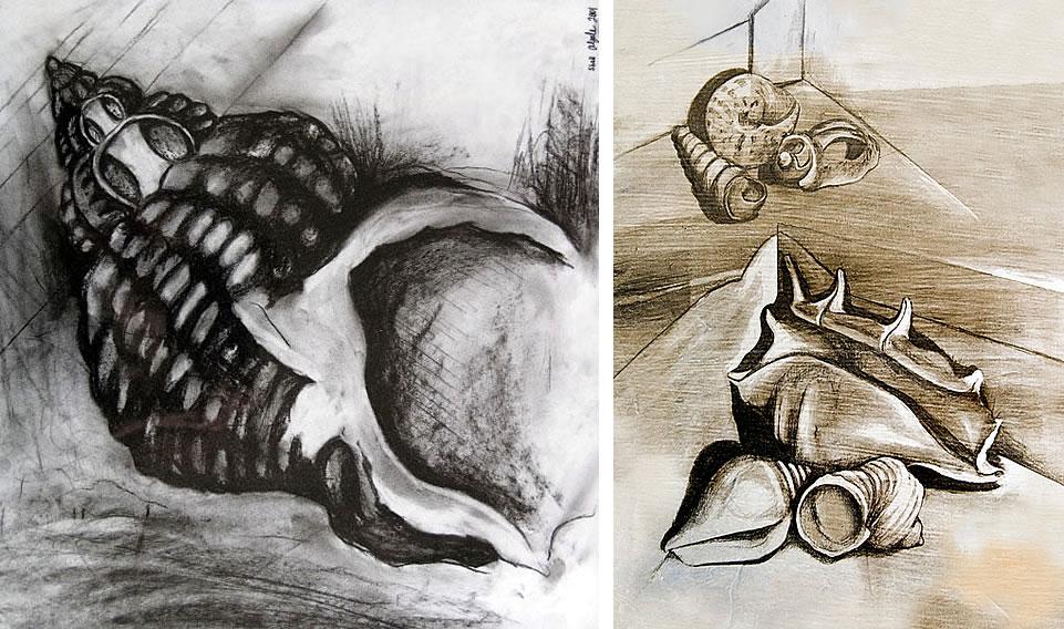 Drawn shell artist Gale Amiria drawings Shell by
