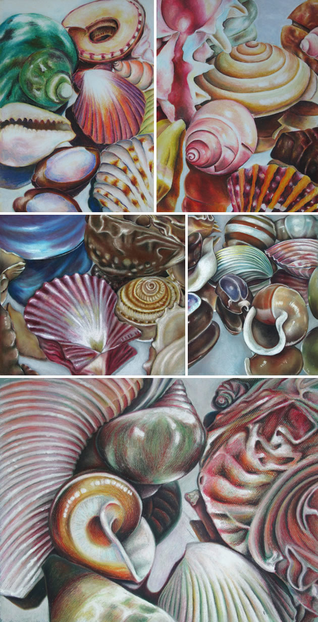 Drawn sea life hyper realistic Life lesson shells: ideas students