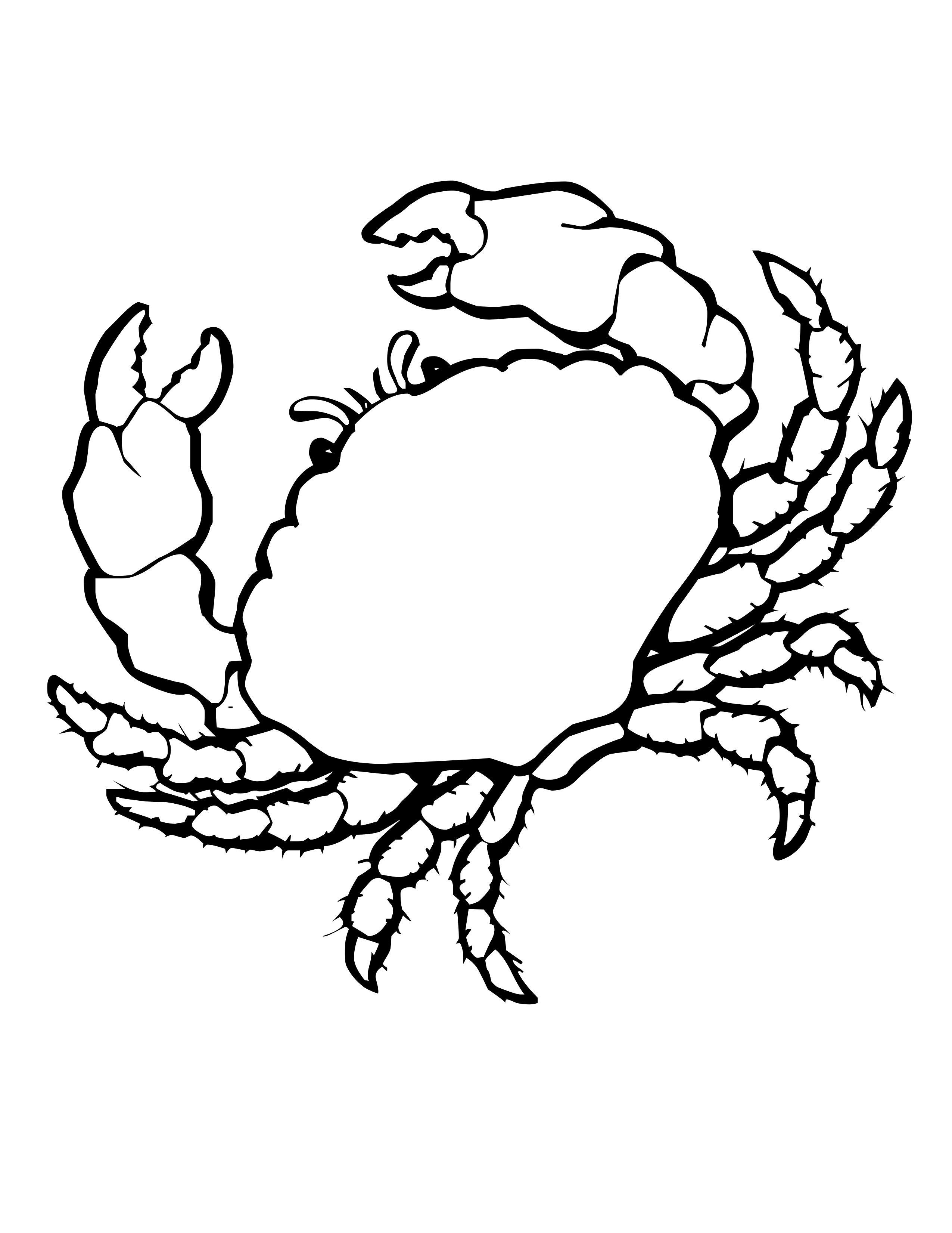 Shell clipart colouring page #1