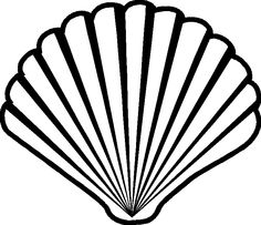 Drawn shell outline Google on more  Pin