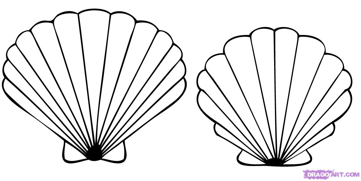 Shell clipart colouring page #10