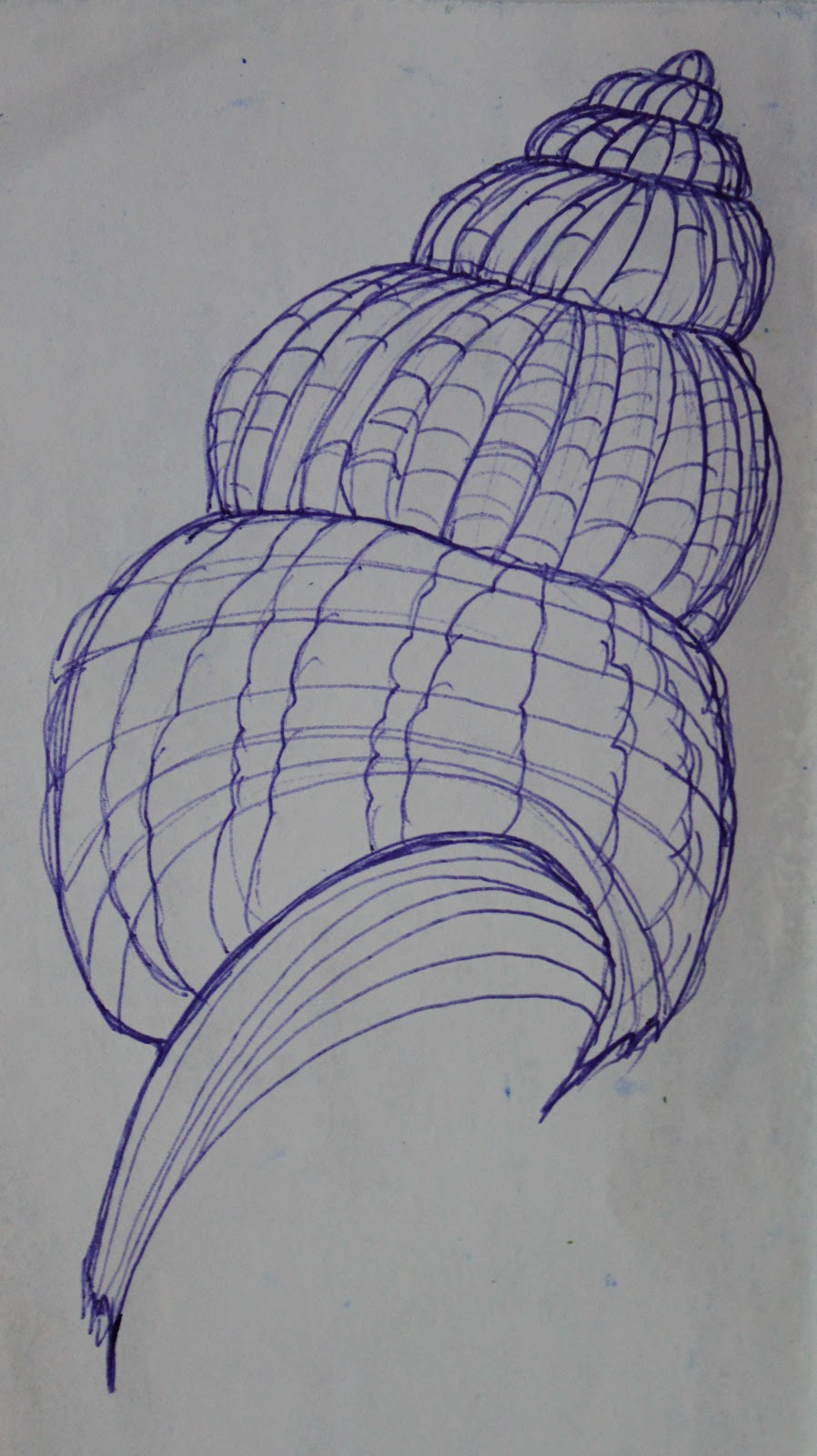 Drawn shell pen drawing Back point a (2) into