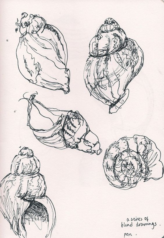 Drawn shell pen drawing More Drawings about Pin this