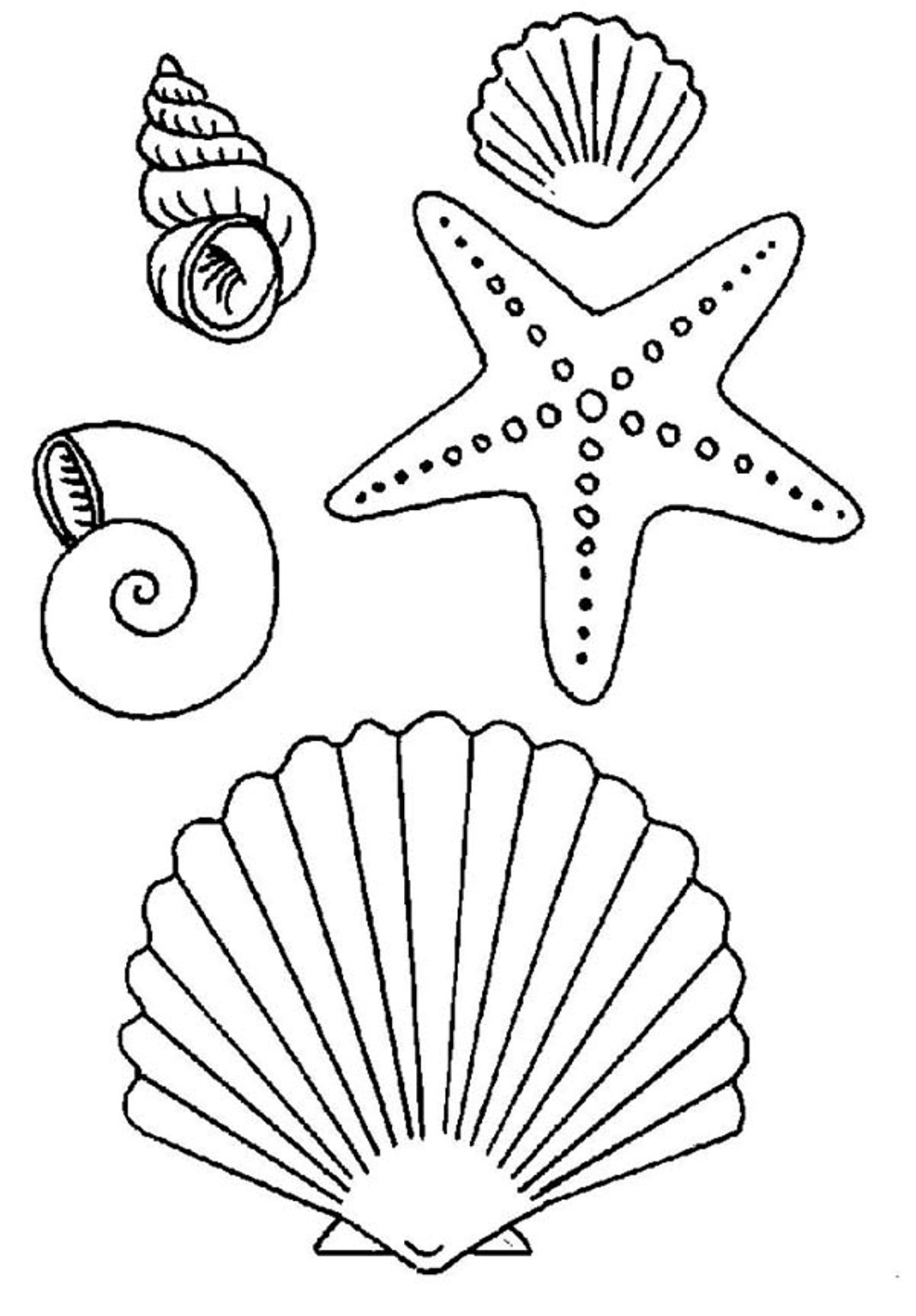 Drawn starfish cute Starfish coloring and pages seashell