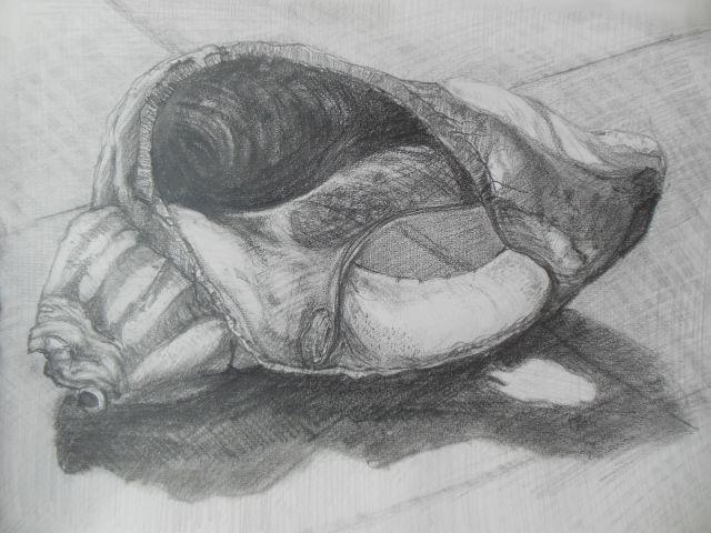 Drawn shell tonal – 3 detail Detail Skills