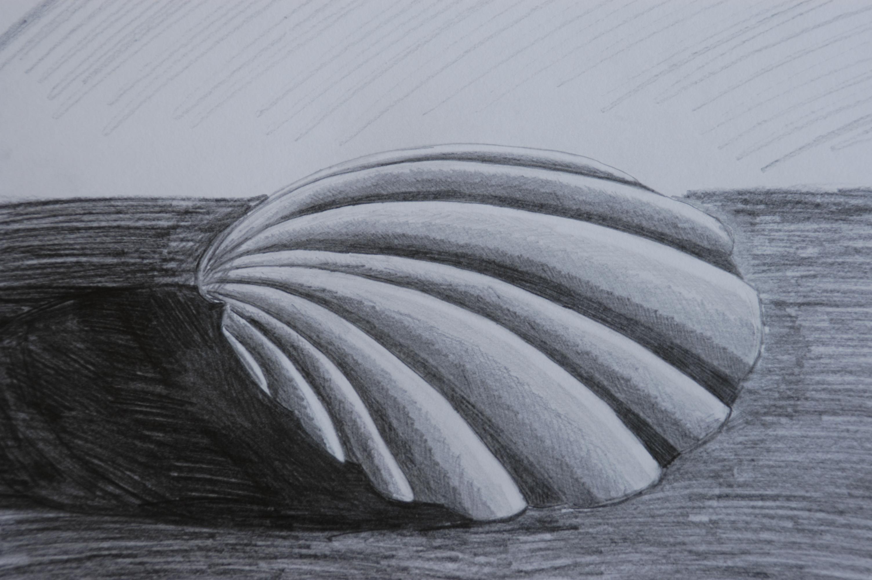 Drawn shell tonal 1 – tone learning Getting