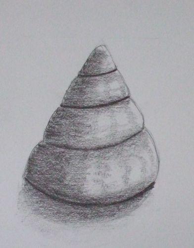 Drawn shell tonal 101: Drawing Conical Class