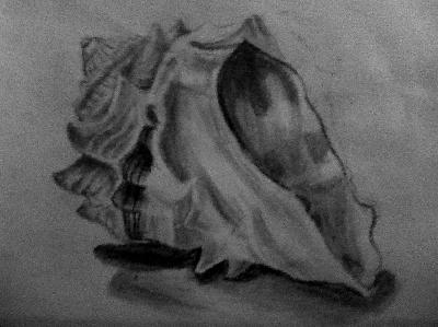 Drawn shell tonal This part drawings of of