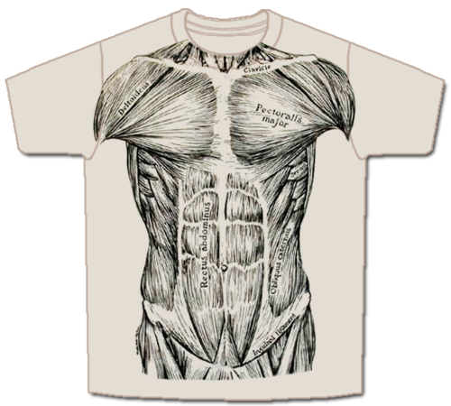Drawn shirt muscle And a black used ink