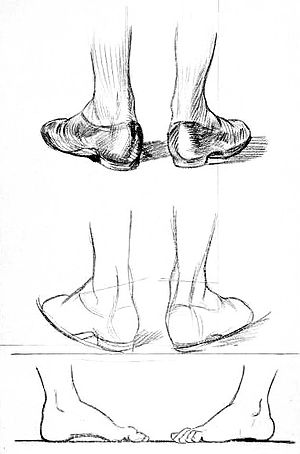 Drawn shoe foot Drawing View and Beginners/Chapter of