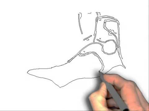 Drawn sneakers kobe 9 Draw shoes from How To