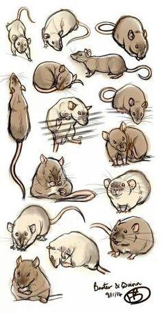 Drawn shoe rat Line nEVEr Rat Sketch Practice