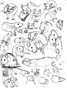 Drawn rat pet rat 7 mor Sketch by nEVEr