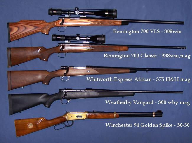Drawn shotgun .22 Forums 22 Page guns!